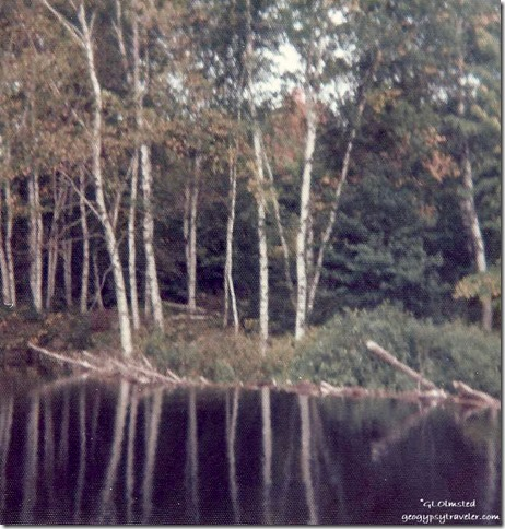 Beaver dam on overflow Upper Penninsula Michigan
