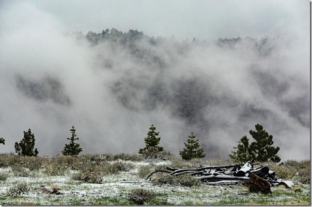 Cloudy Transept Canyon & snow thru RV window North Rim Grand Canyon National Park Arizona