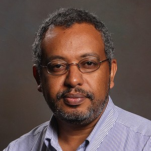 Kiros Berhane, Ph.D., MSc