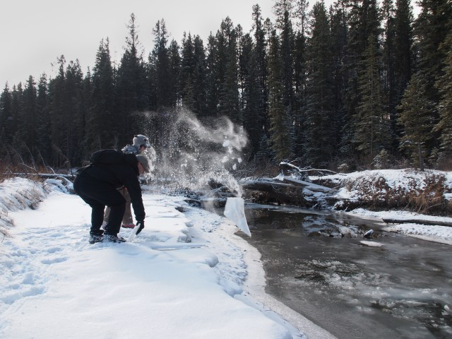 Throwing ice chunks into the water