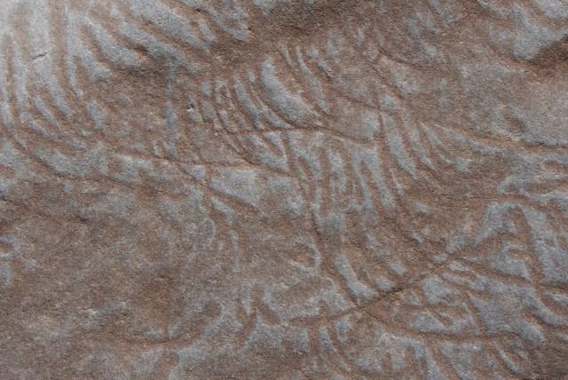 Markings on rock