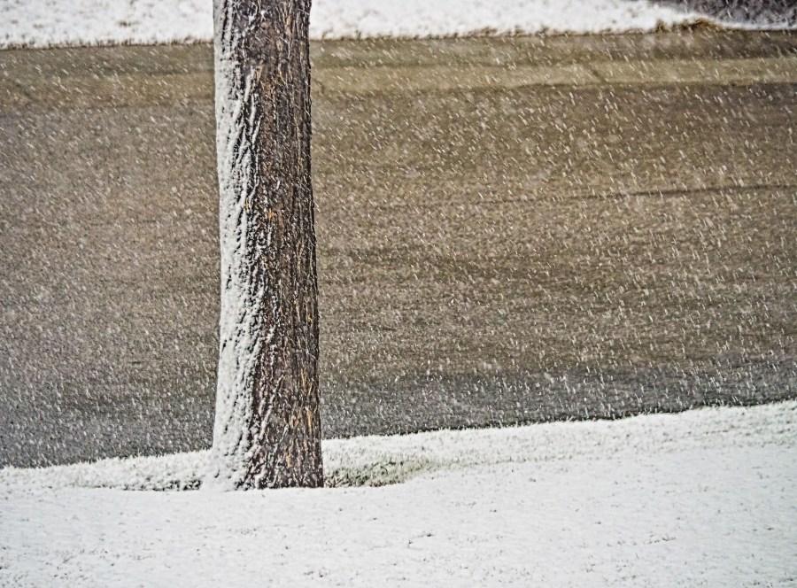 Snow-in-April