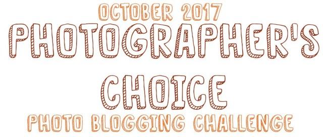 photographers-choice