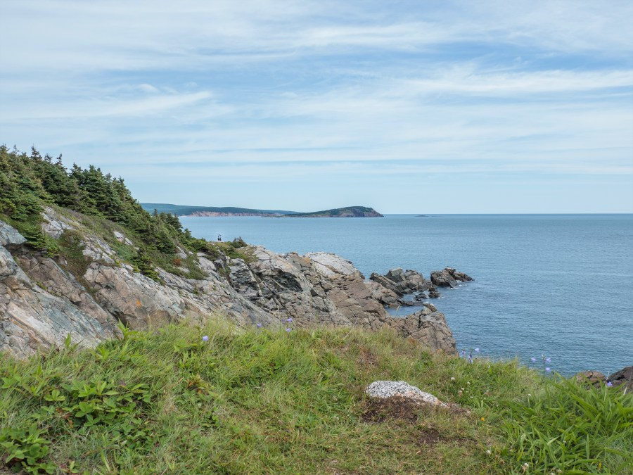 middlehead-trail-cape-breton