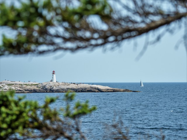 sailboat-approaching-peggy's-point-lighthouse