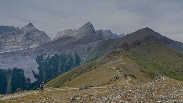 woman on centennial ridge trail hiking towards Mount Allan summit