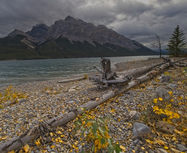 Lake Minnewanka shoreline
