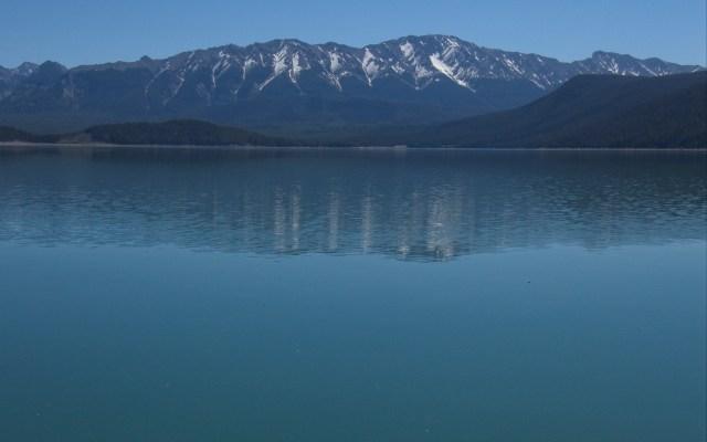 Pocaterra Ridge reflection