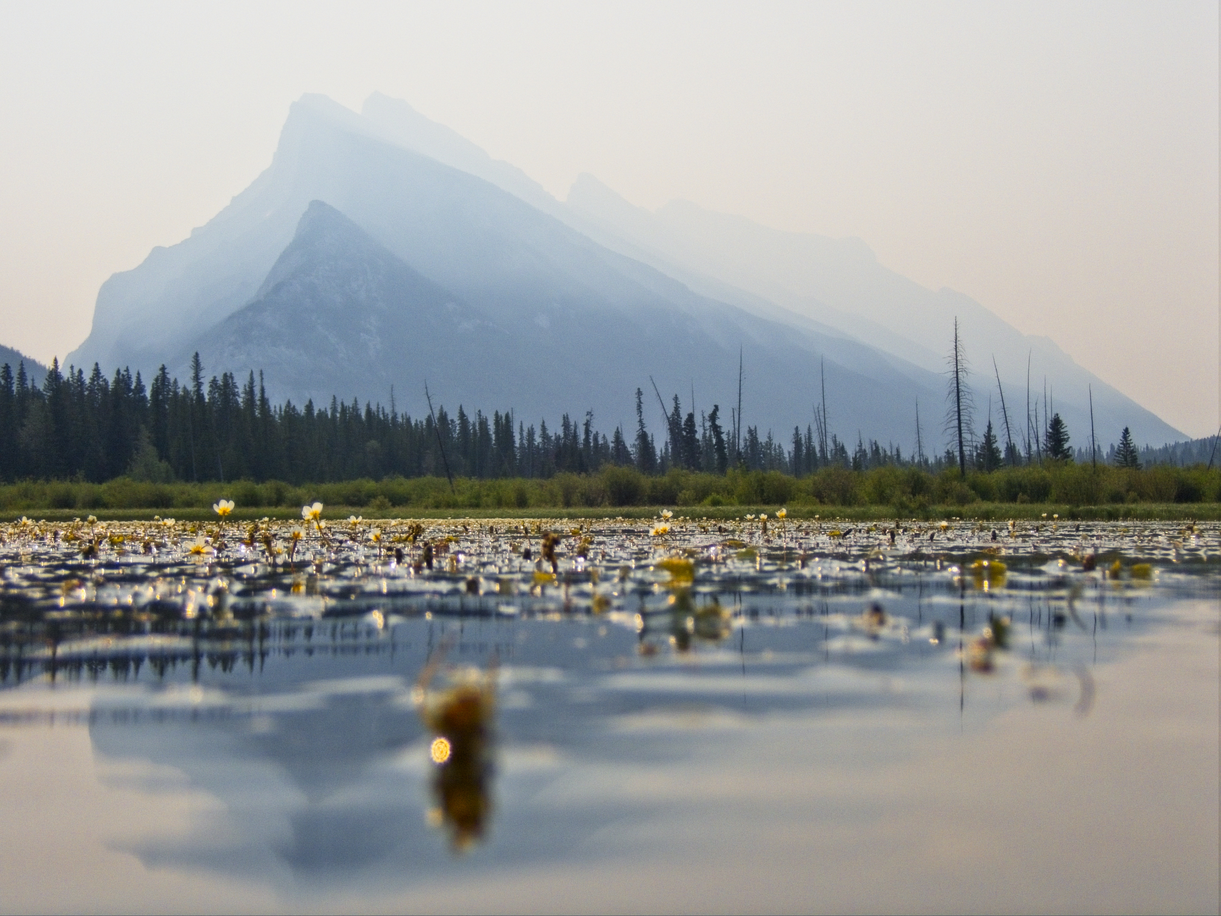 Vermilion Lakes and Mount Rundle