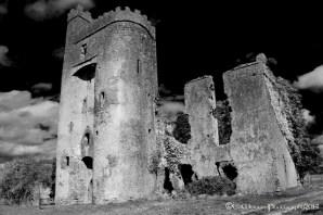 Ballyadam's Castle © Edward Mooney 2014