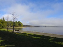 Canberra Mist 2