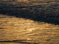 Korora Sunrise Two - 34