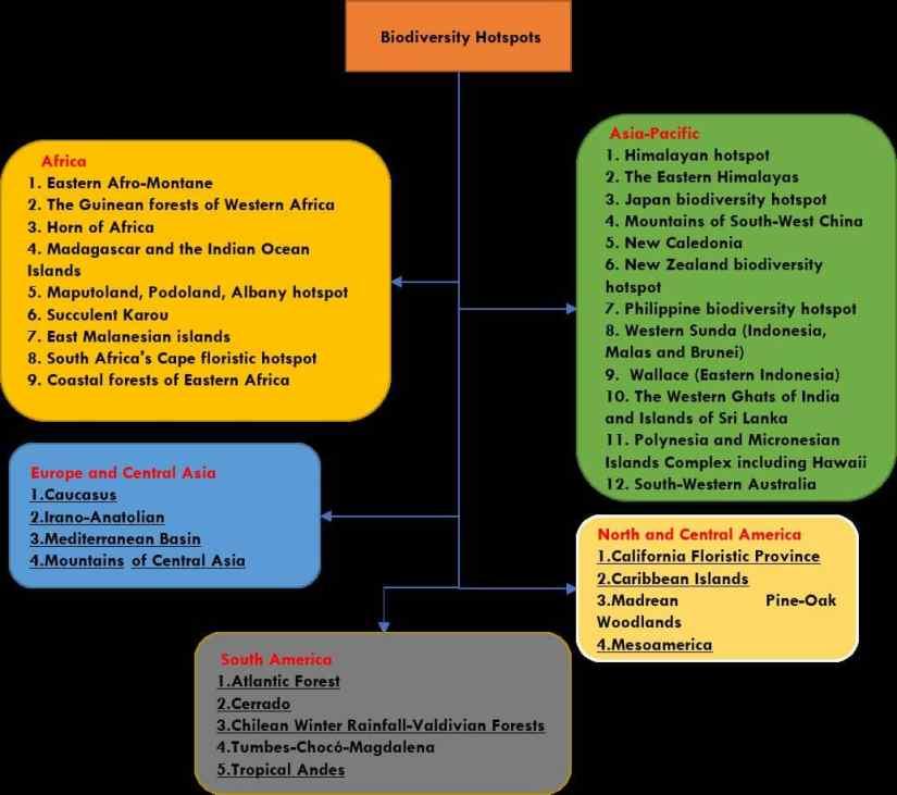 Biodiversity Hotspot Flow Diagram