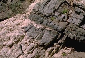 Pegmatite intruding basement gneiss , California