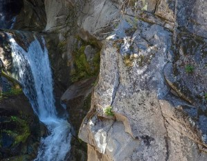 Christine Falls and Tatoosh granodiorite, Mount Rainier National