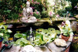 Water feature with Buddha (Sarah Birrell)