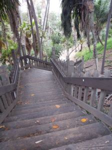 Balboa Park in SD. Photo by Laylita Day.