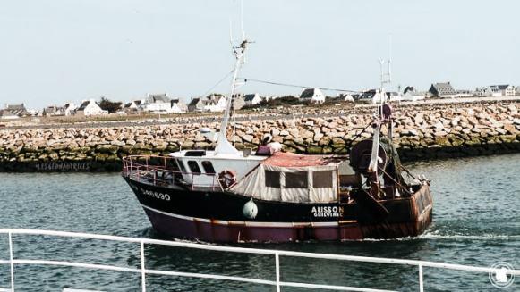 Retour bateau au port, Penmar'ch, Bretagne
