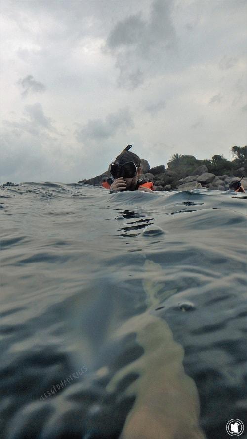 Snorkeling Koh Tao, Thaïlande