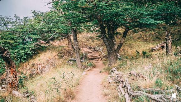Sentier de randonne Laguna Torre