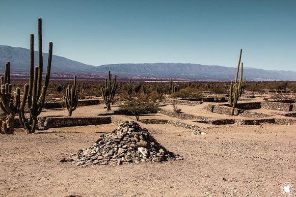 L'entrée aux ruines de Quilmes