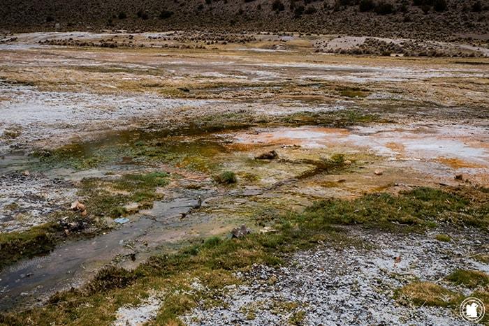 Déchets près des geysers du parc national Sajama