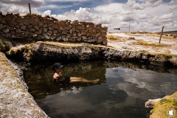 Candie aux eaux thermales du parc national Sajama