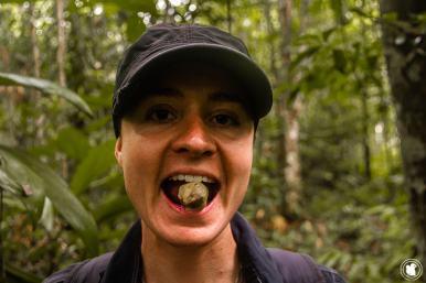 Découverte d'un fruit hydratant au cœur de l'Amazonie