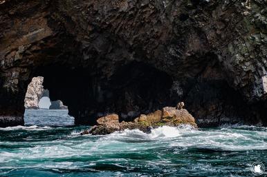 Réserve Naturelle des îles Ballestas à Paracas