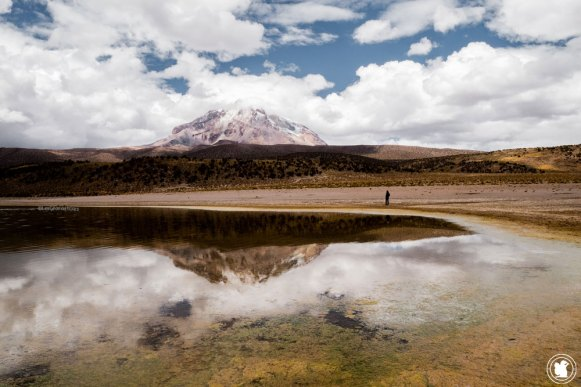Volcan Sajama et laguna Huayñacota