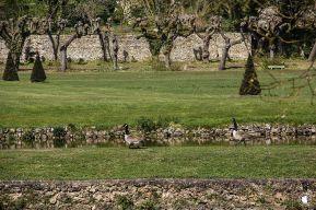 Le parc du domaine de Dampierre