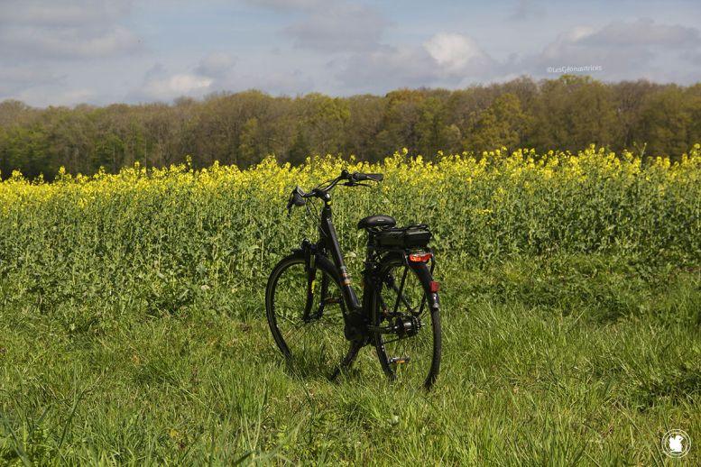 Une belle balada à vélo en Vallée de Chevreuse