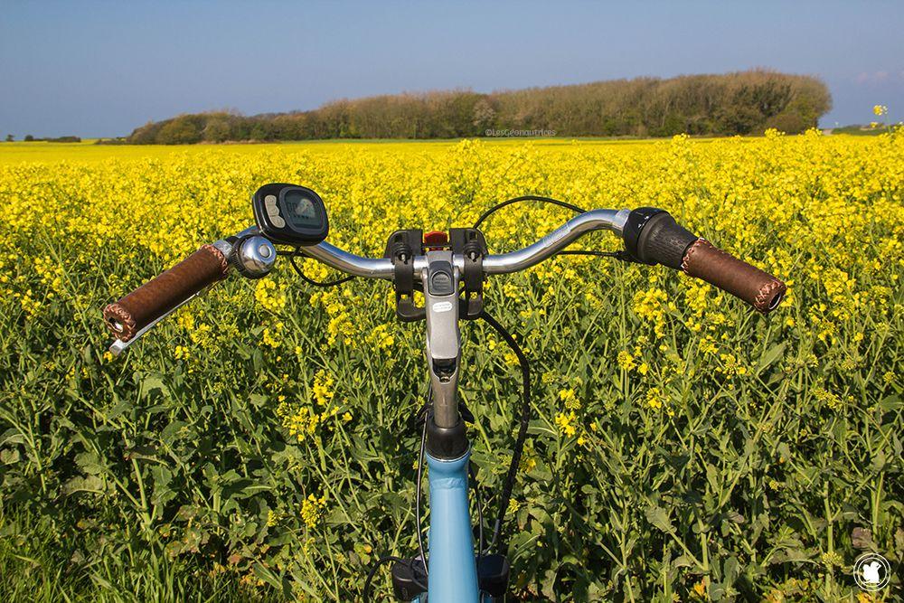 Faire du vélo électrique au milieu des champs sur la Côte d'Opale