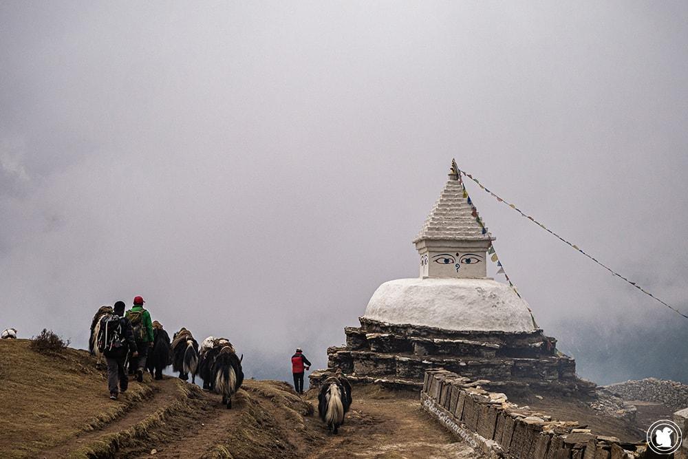 Trek des 3 cols - Sentier Khumjung à Namche Bazaar