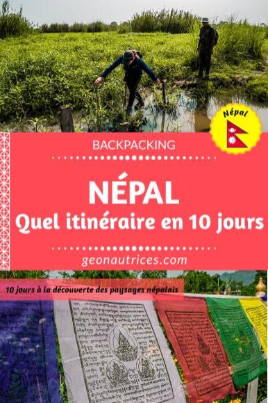 Quel itinéraire pour 10 jours au Népal ? Voilà quelques idées des choses à voir à Katmandou et à Pokhara ainsi que dans la jungle, dans le parc national Chitwan. #ville #jungle #itineraire #nepal