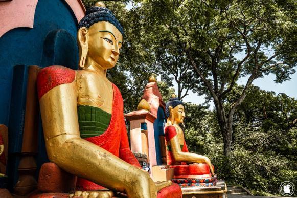 Buddhas du temple Swayambunath