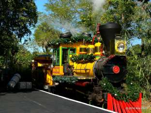 Christmas Town Express