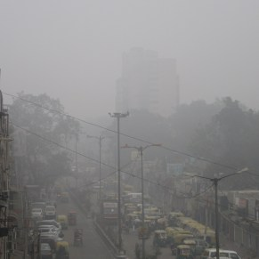Fog. Welcome to Delhi in the winter.