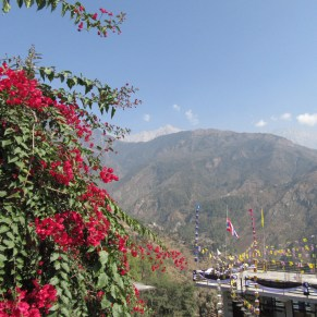 Heading up towards Bhagsu (further up the mountain), looking down over McLeod Ganj