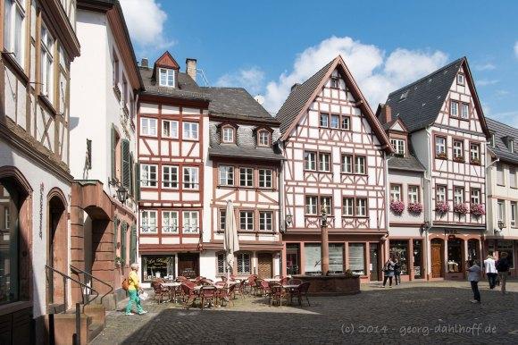 Mainzer Altstadt: Kirschgarten - Bild Nr. 201405180473