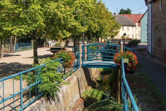 Schwabsburg: Weedplatz - Bild Nr. 201508314932