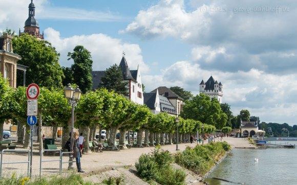 Eltville am Rhein - Bild Nr. 201306301509
