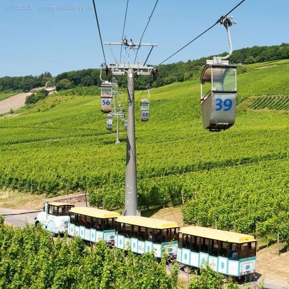 Rüdesheimer Seilbahn und Winzerexpress - Bild Nr. 201307210489