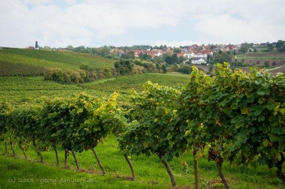 Dolgesheim: Rheinhessisches Hügelland - Bild Nr. 201310081251