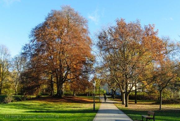Biebricher Schlosspark, Wiesbaden - Bild Nr. 201311242271