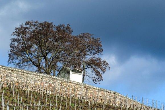 Dauterhauser Heiligenhäuschen am Panoramaweg - Bild Nr. 201402162353