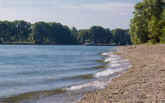 Strandbad Oppenheim am Rhein - Bild Nr. 201407060957