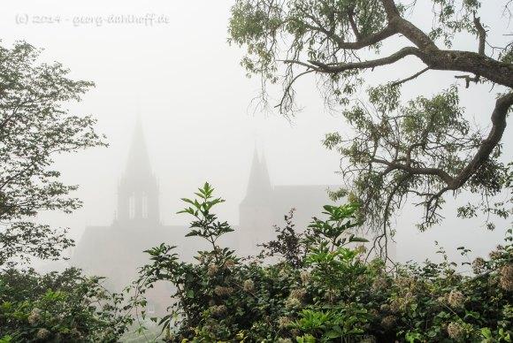Katharinenkirche Oppenheim - Bild Nr. 201409063634