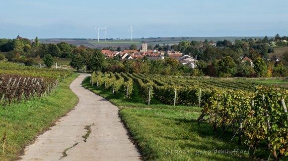 Feldweg nach Mommenheim - Bild Nr. 201410121479