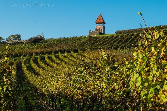 Schildbergturm bei Sulzheim - Bild Nr. 201410181521